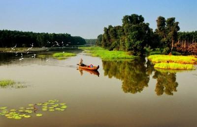 Lịch trình khám phá Đồng Tháp mùa nước nổi 2...