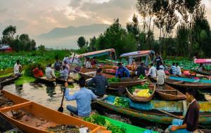 Khám phá những địa điểm du lịch tại Vĩnh Long tuyệt đẹp mà bạn không thể bỏ qua