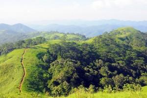 Tà Năng - Phan Dũng - Cung đường trek đẹp nhất Việt Nam