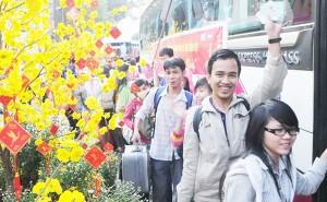 Kinh nghiệm thuê xe về quê ăn Tết, du lịch dịp Tết Nguyên Đán