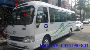 Thuê xe du lịch 29 chỗ dịp Tết Nguyên Đán tại TpHCM